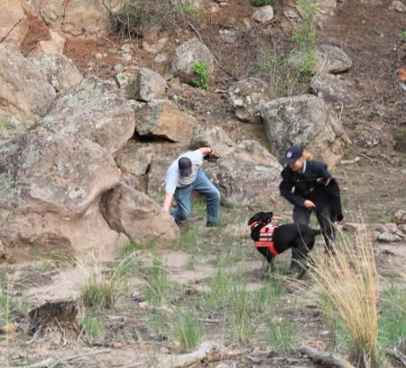 search dogs find in los alamos